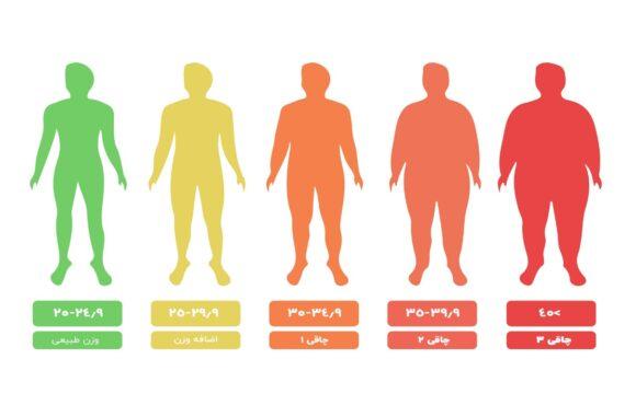 چاقی,چاقی و اضافه وزن چیست آن را چگونه مدیریت نمائیم, چاقی و اضافه وزن چیست آن را چگونه مدیریت نمائیم, بنیاد فرهنگ تغذیه | حکیم رضی