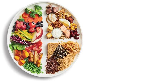 , مواد مغذی موجود در غذا (۲), بنیاد فرهنگ تغذیه | حکیم رضی