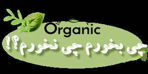بنیاد فرهنگ تغذیه | حکیم رضی
