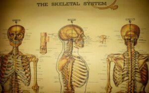 Teahub.io Medical Wallpaper 203451 300x188, بنیاد فرهنگ تغذیه   حکیم رضی